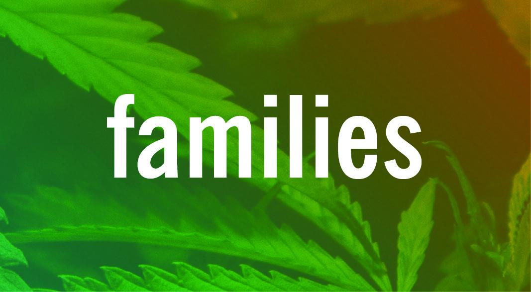 FAMILIES #CANNABISIQ
